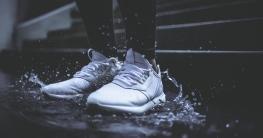 Partner Netzwerk: Adidas Boost, Jogginghose, Bomberjacke